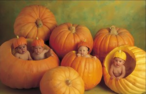 FreeGreatPicture.com-32322-the-giant-pumpkins-for-baby